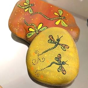 🇨🇦Beautiful hand painted rocks dragonfly set